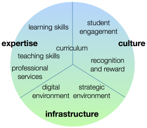 Building the digital university